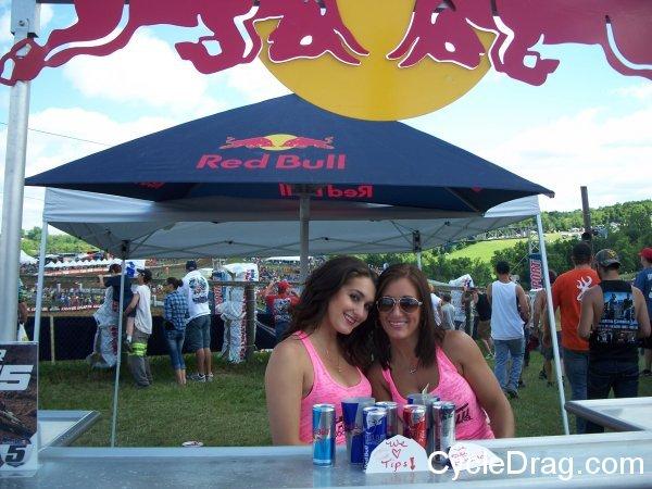 Red Bull Models
