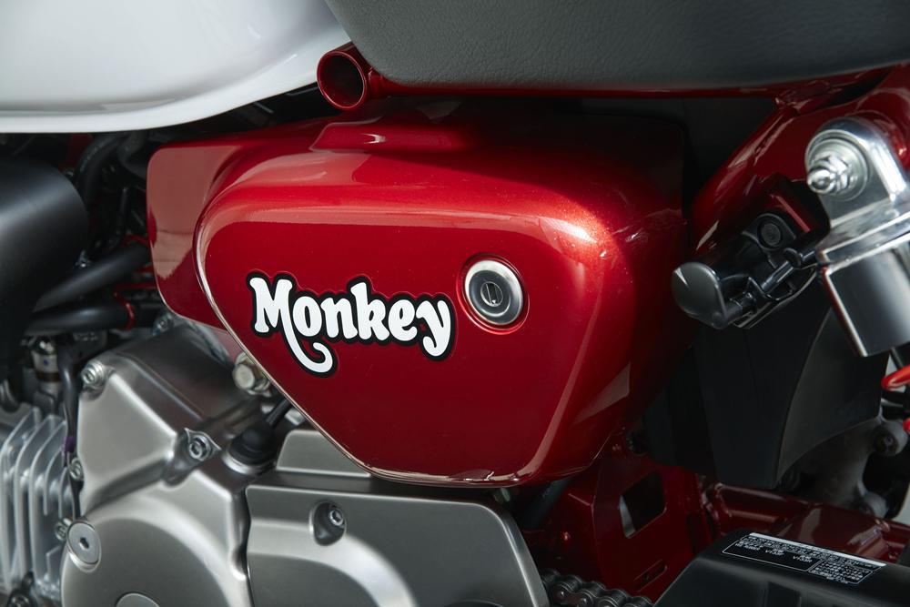 2019-honda-monkey