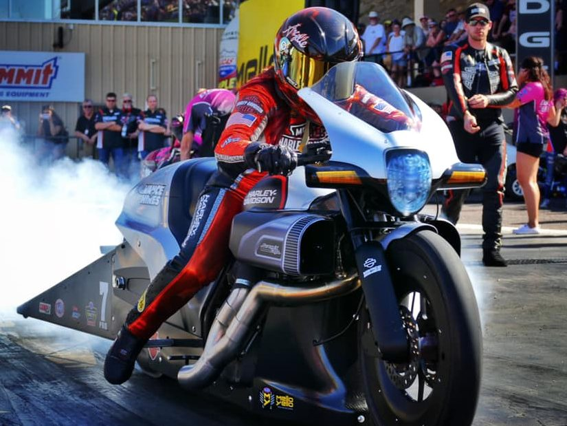 Angelle Sampey Harley FDXR